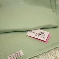 Mint Green Special Occasion Pashmina